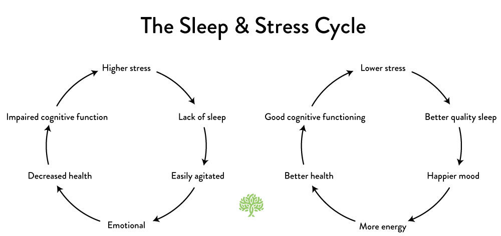 Sleep and Stress Graph